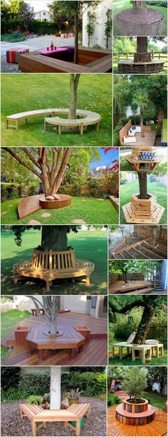 Creative & Inspiring Tree Seats Around Trees
