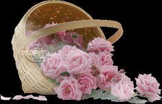 gifs de flores se abrindo - Pesquisa Google