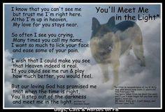 I Miss My Dog Poem - Picsora