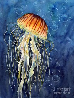 Jellyfish Acrylic Print by Hailey E Herrera. All acrylic prints are professionally printed, packaged, and shipped within 3 - 4 business days and delivered ready-to-hang on your wall. Choose from multiple sizes and mounting options. Jellyfish Art, Art Prints, Watercolor Fish, Fish Art, Easy Watercolor, Fine Art America, Painting, Art, Watercolor Paintings Easy