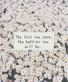 The less you care quotes flowers happy life care less....  Maybe this is true and maybe I need to star caring much less.