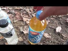 How To Purify Water With Iodine For Survival | Survival skills, survival guns, survival guide