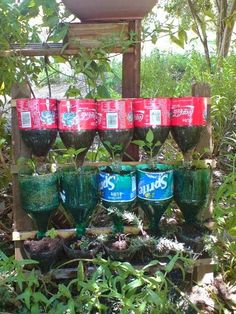 , Bottle herb garden - recycling project (although I'd have to find someone to give me the soda bottles! , Bottle Herb Garden – a Recycling Project. Bottle Garden, Diy Bottle, Bottle Crafts, Bottle Plant, Container Gardening, Gardening Tips, Culture D'herbes, Recycled Garden, Recycled Planters