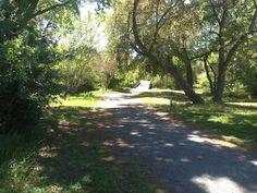 Markham Nature Park, Concord, CA