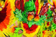 The Colors of Carnival: Brazil