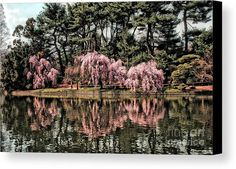 Spring Reflections Canvas Print by Onedayoneimage Photography.  All canvas prints are professionally printed, assembled, and shipped within 3 - 4 business days and delivered ready-to-hang on your wall. Choose from multiple print sizes, border colors, and canvas materials.