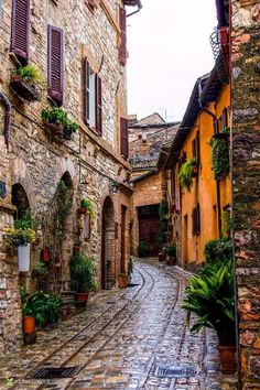 Spello ~ Province of Umbria, Italy. #italyvacation
