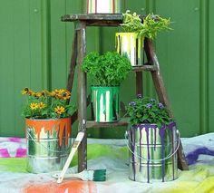 Банки из-под краски в качестве садовых контейнеров