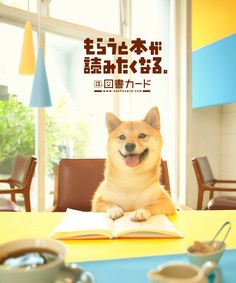 2012 fall/図書カード/poster
