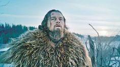 """""""O Grito do Bicho"""": Pele de urso usada por Leonardo DiCaprio em """"O Reg..."""