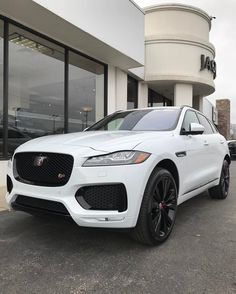 Snow Cat!  2017 Jaguar F-Pace S