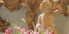 Terra-cotta putto heralds floriferous season in the garden. Whirligigs of pink scabiosa in a porcelain vase.   - Veranda.com