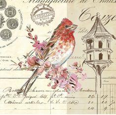 Винтаж. Птички,бабочки,цветочки. Картинки для творчества.