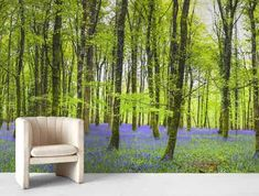 Blåklokker skog tapet Sunrise Wallpaper, Forest Wallpaper, Outdoor Furniture Sets, Outdoor Decor, Blue Walls, Poster Wall, Game Room, Wall Murals, Poppies