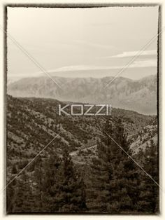 sepia image of mountain range. - Sepia image of mountain range with trees.
