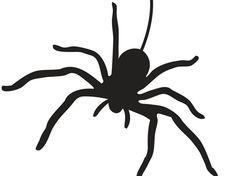 Spinne Vorlage zum Ausdrucken