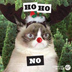 Ho Ho No!