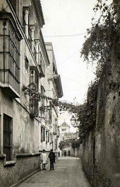 ¿Sabíais q en el número 2 del Callejón del Agua se encuentra posiblemente el patio sevillano más famoso de la ciudad?