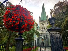 Trondheim Norway  . . . . . . . . . . . . . . . . . #trondheim #visittrondheim #trondheimsfjorden #bestofnorway #visitnorway #norgebilder #ilovenorway #mittnorge #norgefoto #norgeimitthjerte #europe_greatshots #europe_gems #earthputdoors #europetravel #earthfocus #world_great #withgalaxy #wms_europe #wanderlusters #Yallerseurope #urbanocity #Vivoartworld #vacation #viajero #visiting #liveauthentic #love_cityscapes #letsguide #loves_trips #loves_world