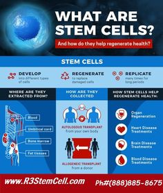 What is a stem cell? The definition of a stem cell is a type of undifferentiated cell that can become a wide range of different cell types. What Is Stem, Human Body Facts, Cord Blood Banking, Stem Cell Research, Medical Laboratory Science, Gene Therapy, Cell Biology, Teaching Biology, Physical Therapy