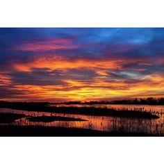 Thomas Mangelsen - Painted Sky - http://mangelsen.com/landscapes/purple-tones/painted-sky-2987.html