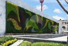 Green Facade, Vertical Garden Wall, Succulent Wall, Landscape Architecture, Organic Architecture, Plant Nursery, Plant Wall, Garden Structures, Landscaping Plants