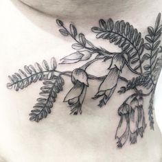 Work in progress kowhai Fern Tattoo, I Tattoo, Tui Bird, Kiwiana, Body Mods, Tattoo Inspiration, Tatoos, Body Art, Tattoo Ideas