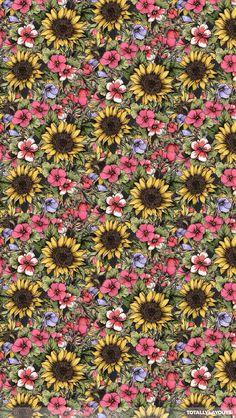 sunflower iphone wallpaper - Google Search