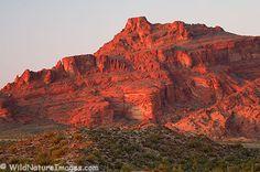 Red Mountain, Mesa, AZ.