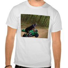Dog on a Skidoo T Shirt