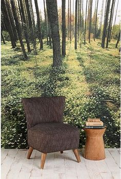 Yes! I've always loved those nature scene wallpaper murals, but living in an apartment, I need something less permanent (and less expensive). I think we've found a winner!