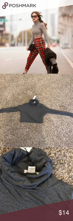 nasty gal crop turtle neck gray new purchased at nasty gal brand is glamorous Nasty Gal Tops Crop Tops