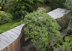Le studio londonien 6a Architects a réalisé l'extension de la maison de Rowan Moore, critique d'architecture. Structure en bois, l'extension serpente autour d'un arbre au milieu d'un jardin verdoyant.  Elle abrite une nouvelle chambre ainsi qu'une salle de bain et complète la maison qui est un amalgame de deux chalets construits en 1830. Un long couloir relie le salon de maison existante à la chambre de l'extension dans une continuité bien négociée.