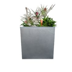c409675b339 The Milano Galvanized Steel Planter is an excellent planter for just about  any living space.