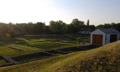 The dawn in the herb garden in Ópusztaszer