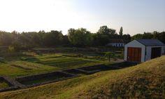 The dawn in the herb garden in Ópusztaszer