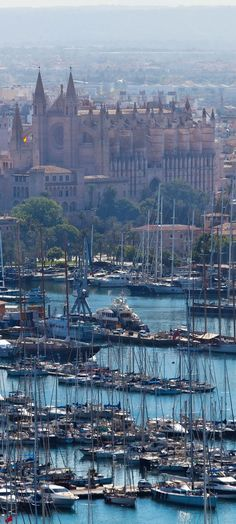 La Seu Cathedral and harbour, Palma de Mallorca, Spain