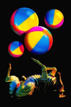 "Saatchi Art Artist TOULA MAVRIDOU-MESSER; Photography, ""Foot Juggling Zebra"" #art"