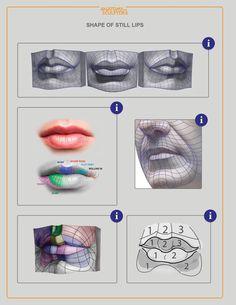 Anatomy For Sculptors: Understanding the Human Figure - PDF (e-book) - Meridith Semiraz Head Anatomy, Anatomy Drawing, Anatomy Organs, Muscle Diagram, Human Anatomy For Artists, Anatomy Reference, Pose Reference, Book Making, Art Tutorials