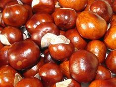 Autumn is brown Fall Fruits, Sustainable Living, Plum, Health And Beauty, Beans, Vegetables, Healthy, Tips, Food