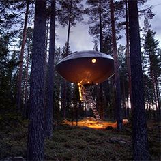 Out of this world UFO Tree Hotel in Sweden.