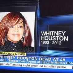 Vynikajúci článok o Whitney Houston