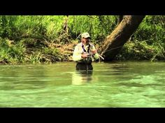 """W4F - Fly Fishing """"Importance of the Nymph"""" Scuds and Pheasant Tail Droppers - YouTube"""