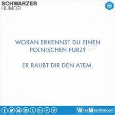 Schwarzer Humor Witze Sprüche #31 - Polenwitze