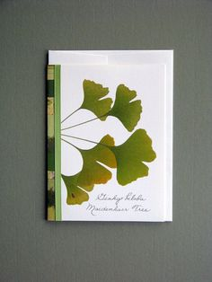 Ginkgo leaves lime fresh spring green by FlatFlowerDesigns on Etsy, $3.75