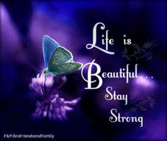 butterfly saying