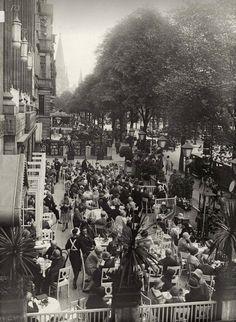Kudamm 1929