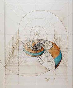 Золотое сечение в иллюстрациях от архитектора Рафаэля Араужо + (2 видео)