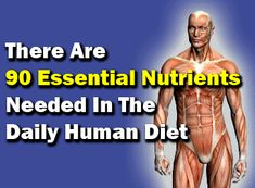 90 essential nutrients that your body needs for strong bones, heart - Youngevity™