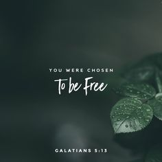 Read the Bible. A free Bible on your phone, tablet, and computer. Bible Verses Quotes, Bible Scriptures, Faith Quotes, Gospel Bible, Daily Scripture, Scripture Art, Trust God, Word Of God, Christian Quotes